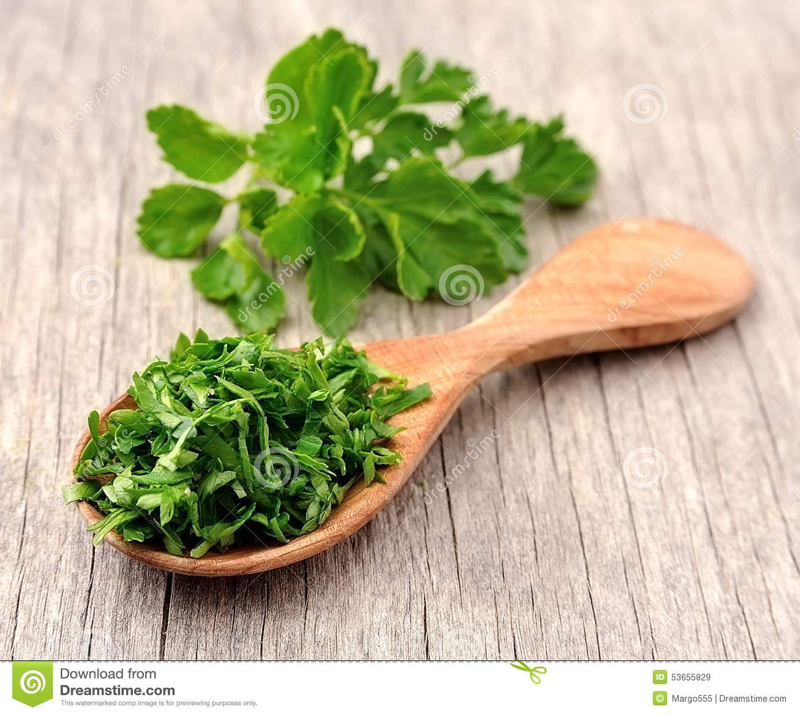 Fresh parsley herbs stock image. Image of sweet, ripe ...