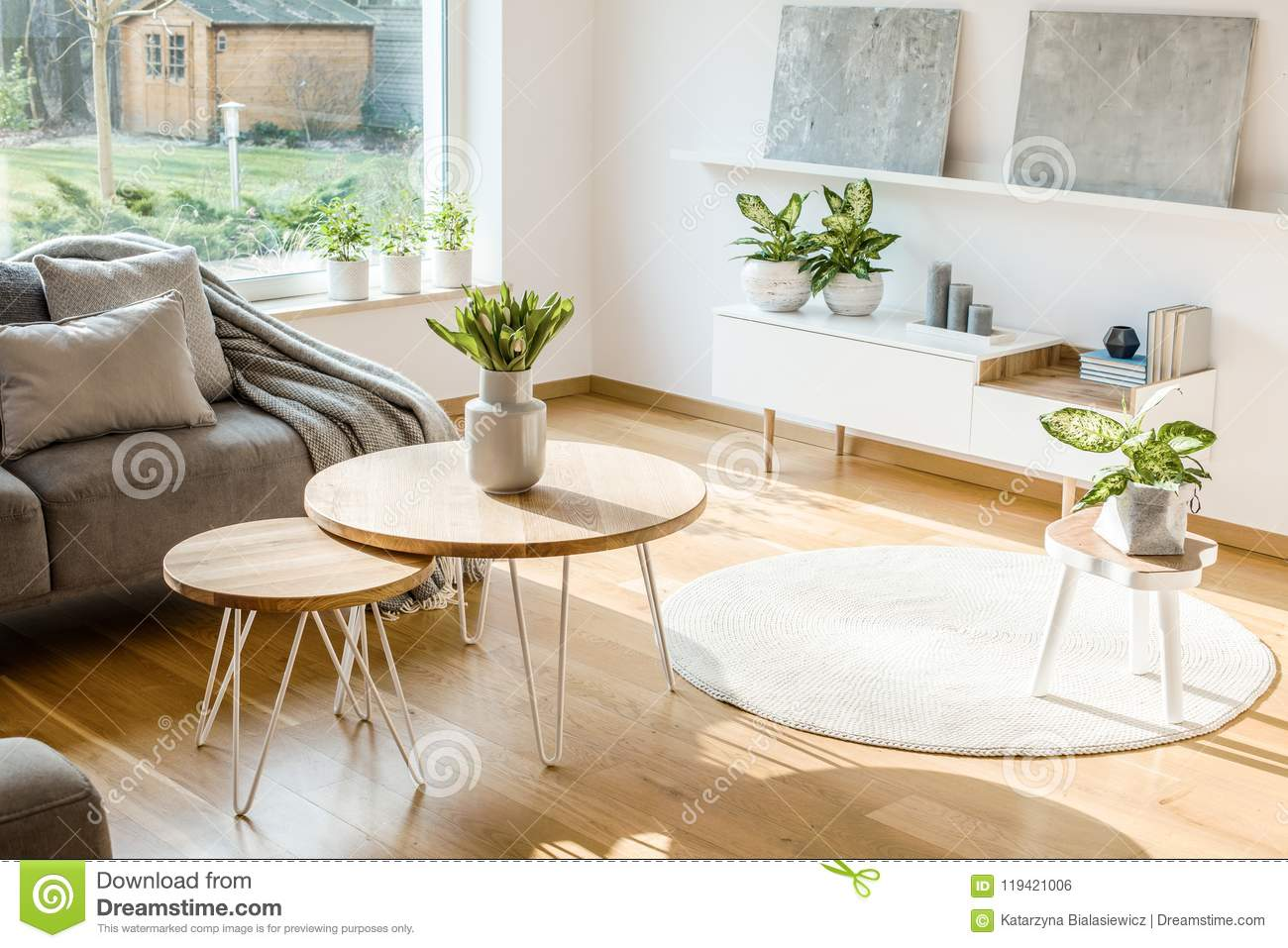 Fresh Plants And Flowers Placed In Bright Living Room