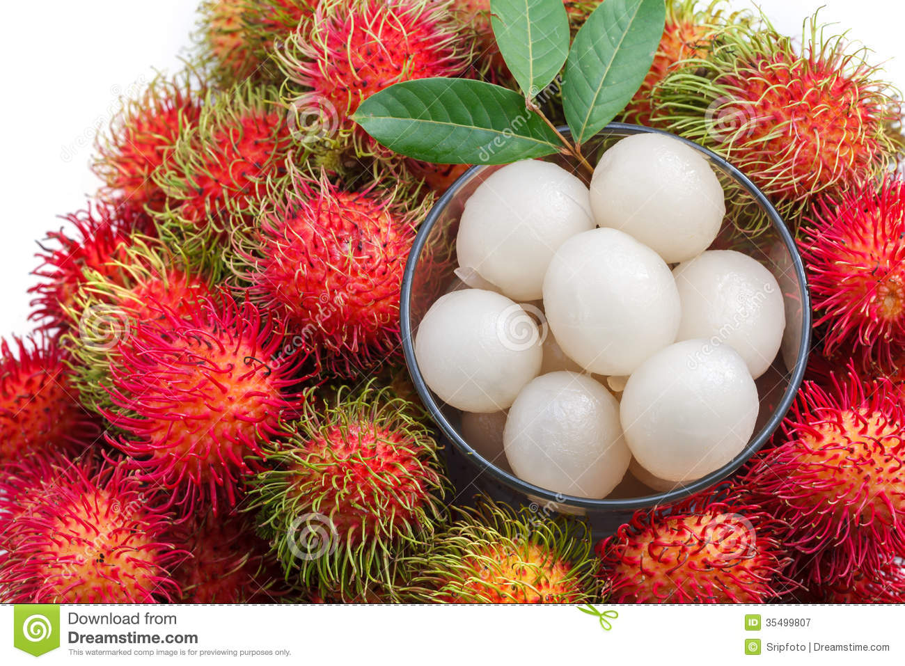 Rambutan Fruit Isolated Stock Image - Image: 24991041