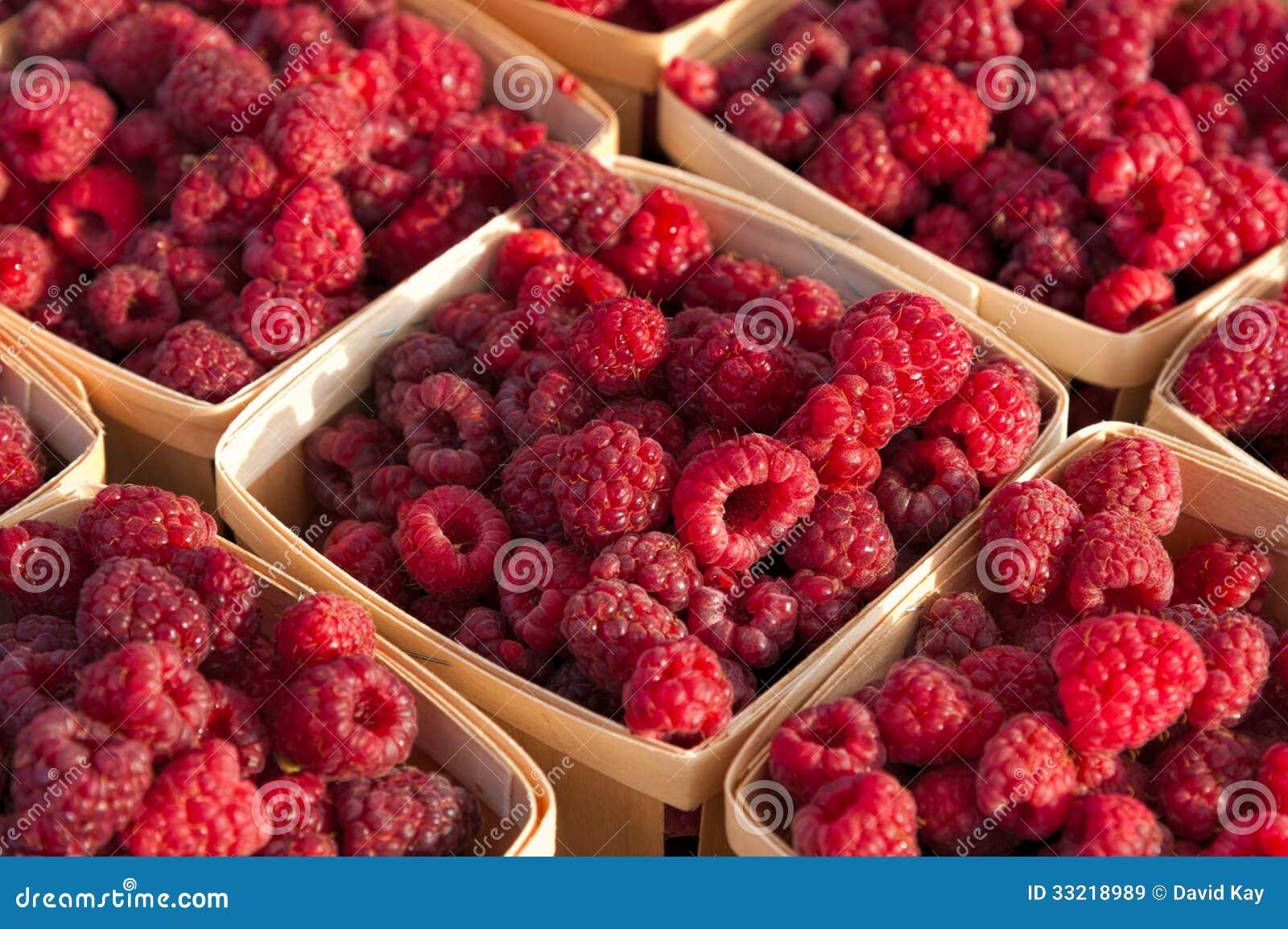 how to keep raspberries fresh