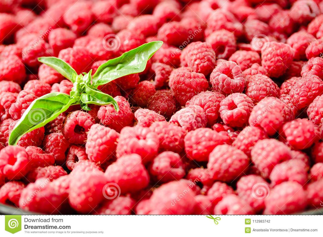 Fresh raspberry and basil background closeup photo.Top view..Detox diet food and raw vegan concept.