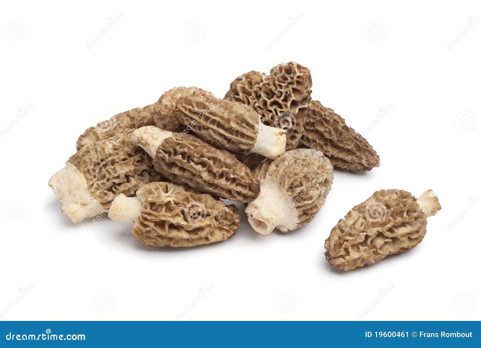 how to keep mushrooms fresh