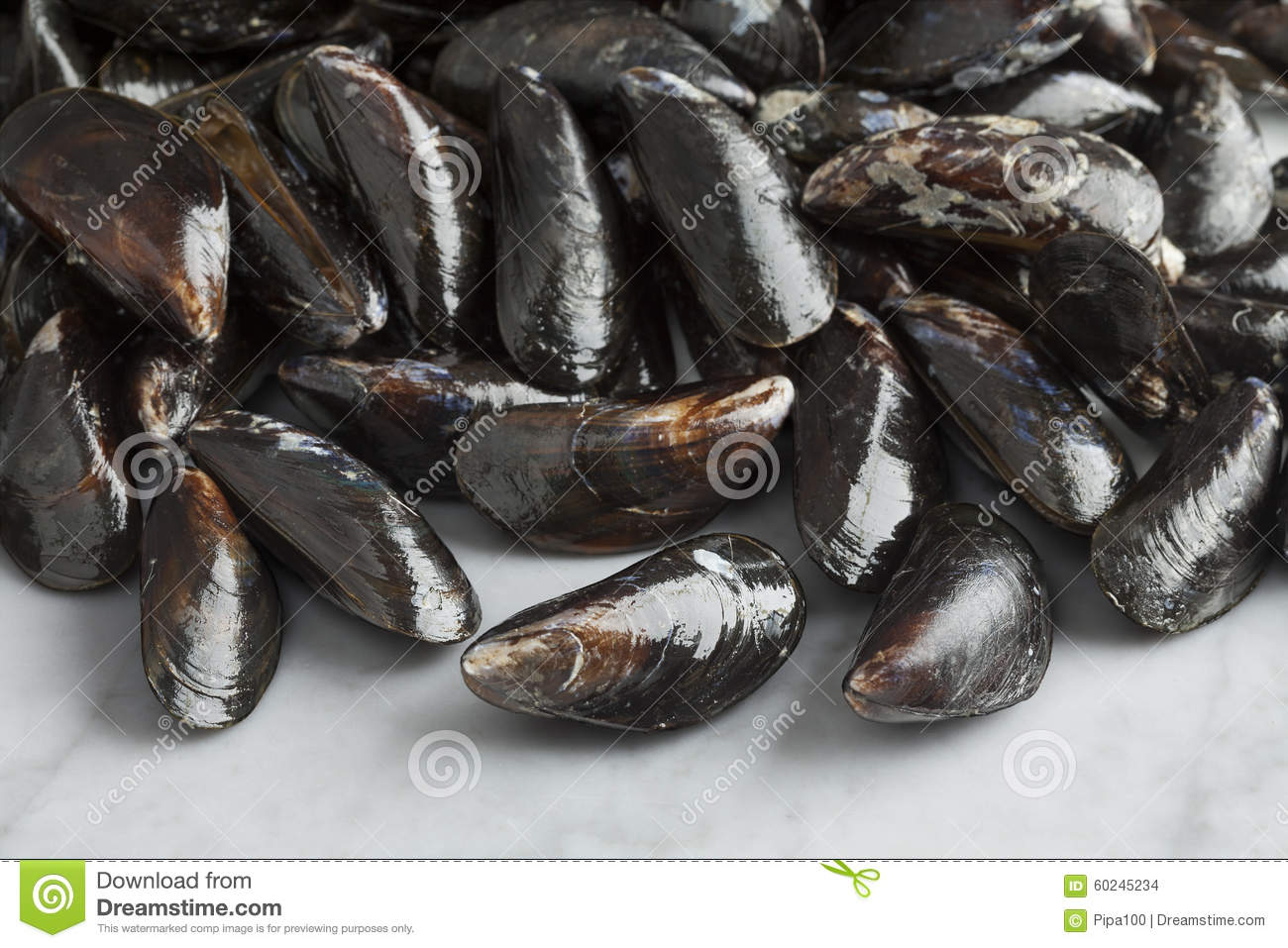 how to keep raw mussels