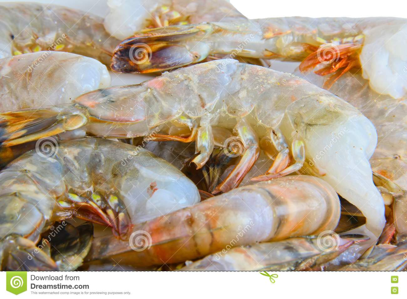 Fresh Raw Tiger Prawns Stock Images - Image: 17356684