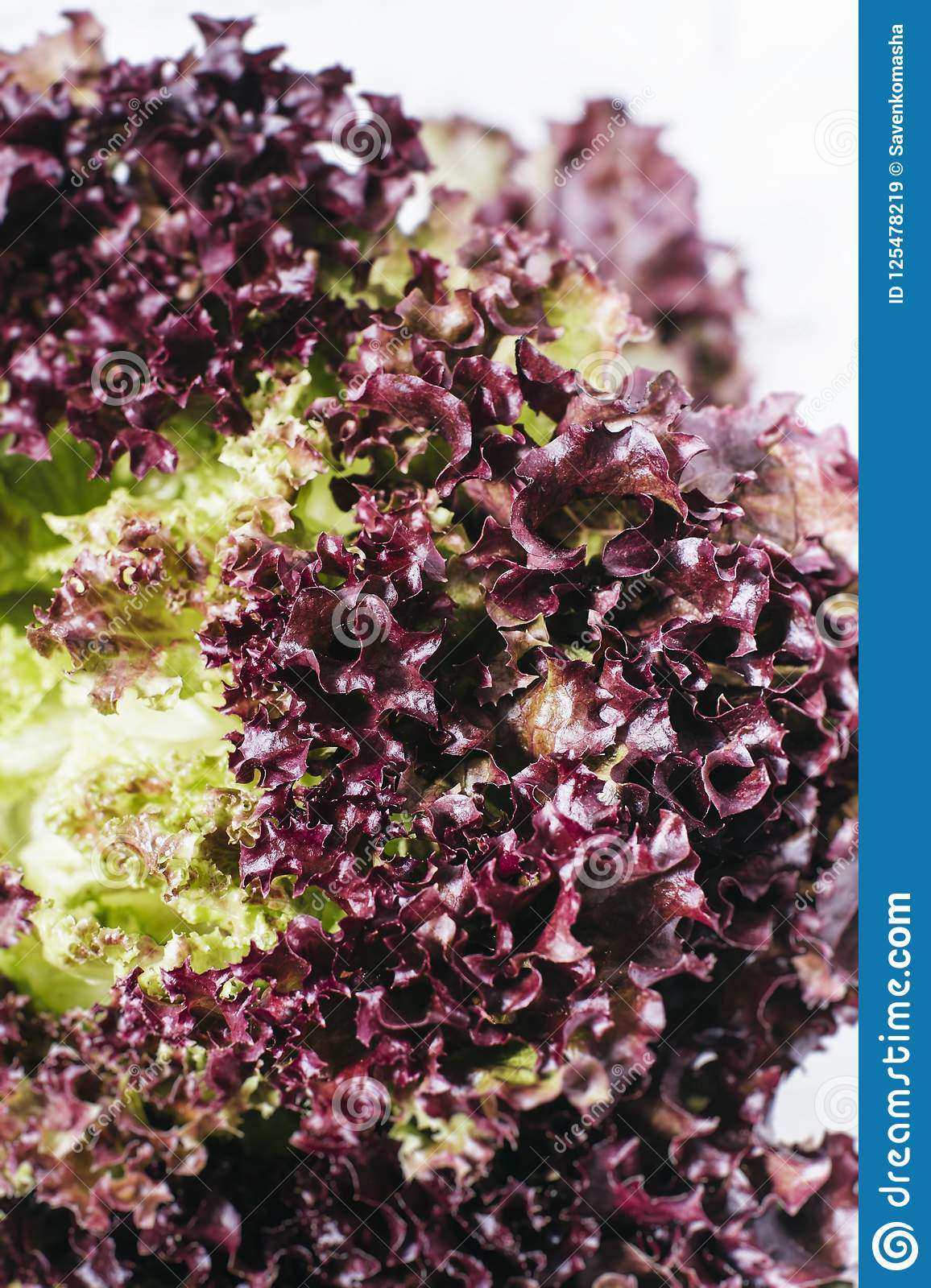 Fresh red salad lettuce leaves on a background of white brick wall top view close up vertical