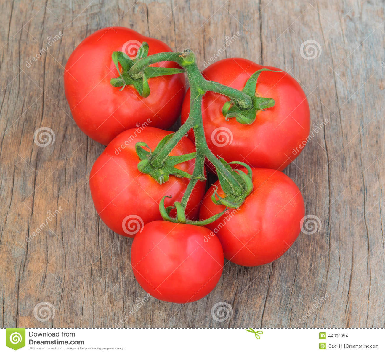 Tomato on wood background stock photography