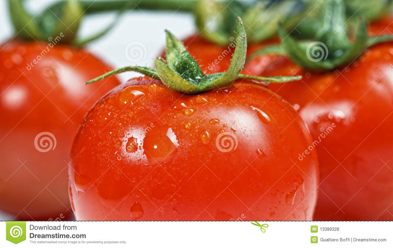 Fresh Red Tomatoes Royalty Free Stock Photos - Image: 13389328