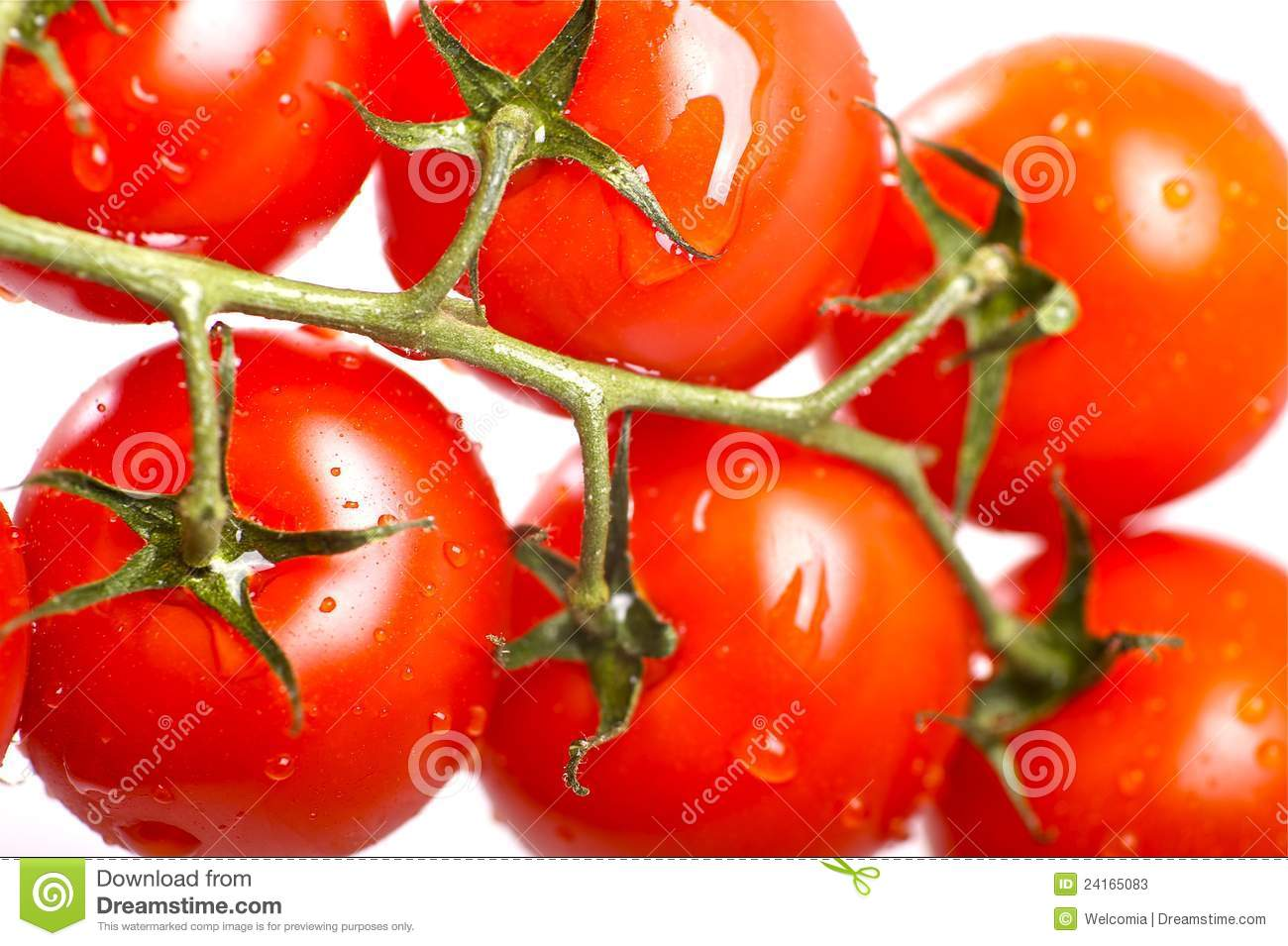Fresh Red Tomatoes Stock Photos - Image: 24165083