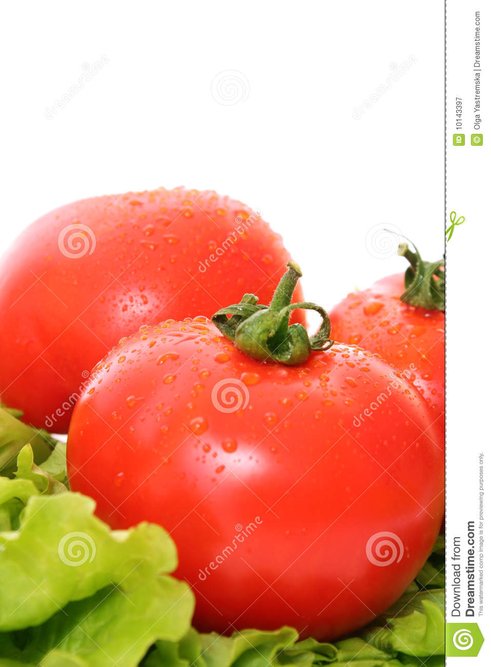 Fresh Red Wet Tomatoes Royalty Free Stock Photography ...