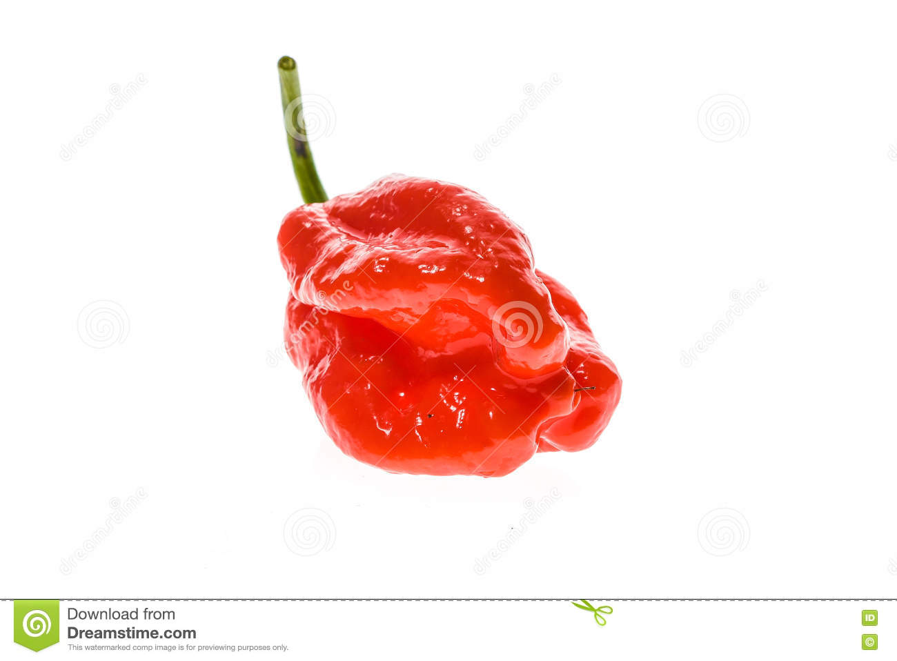 how to know if chilli is ripe