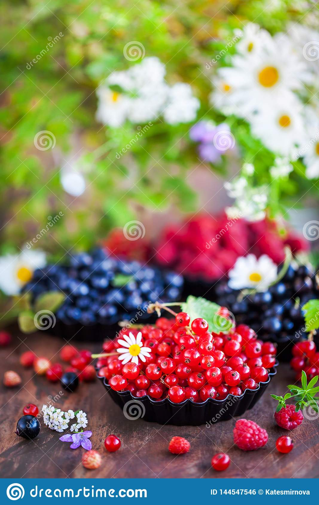Fresh ripe summer berries - red currant in the foreground and black currant, blueberry, raspberry