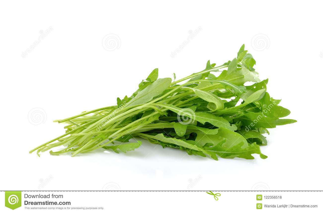 Fresh rocket lettuce leaves or sweet rucola salad isolated on white b