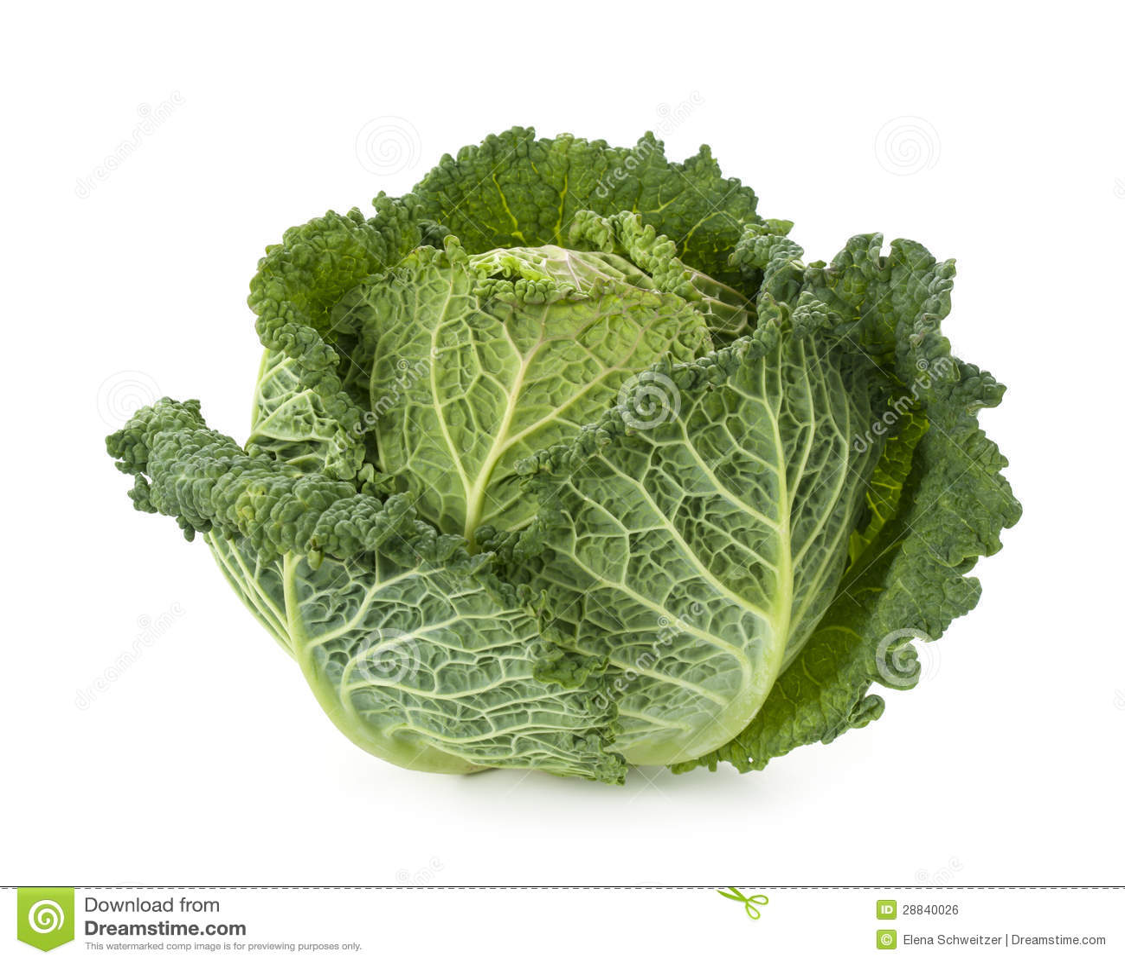 Fresh savoy cabbage Royalty