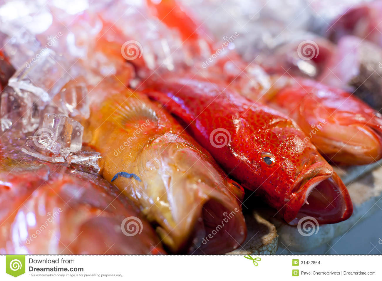 Fresh seafood in asian market stock images image 31432864 for Oriental fish market