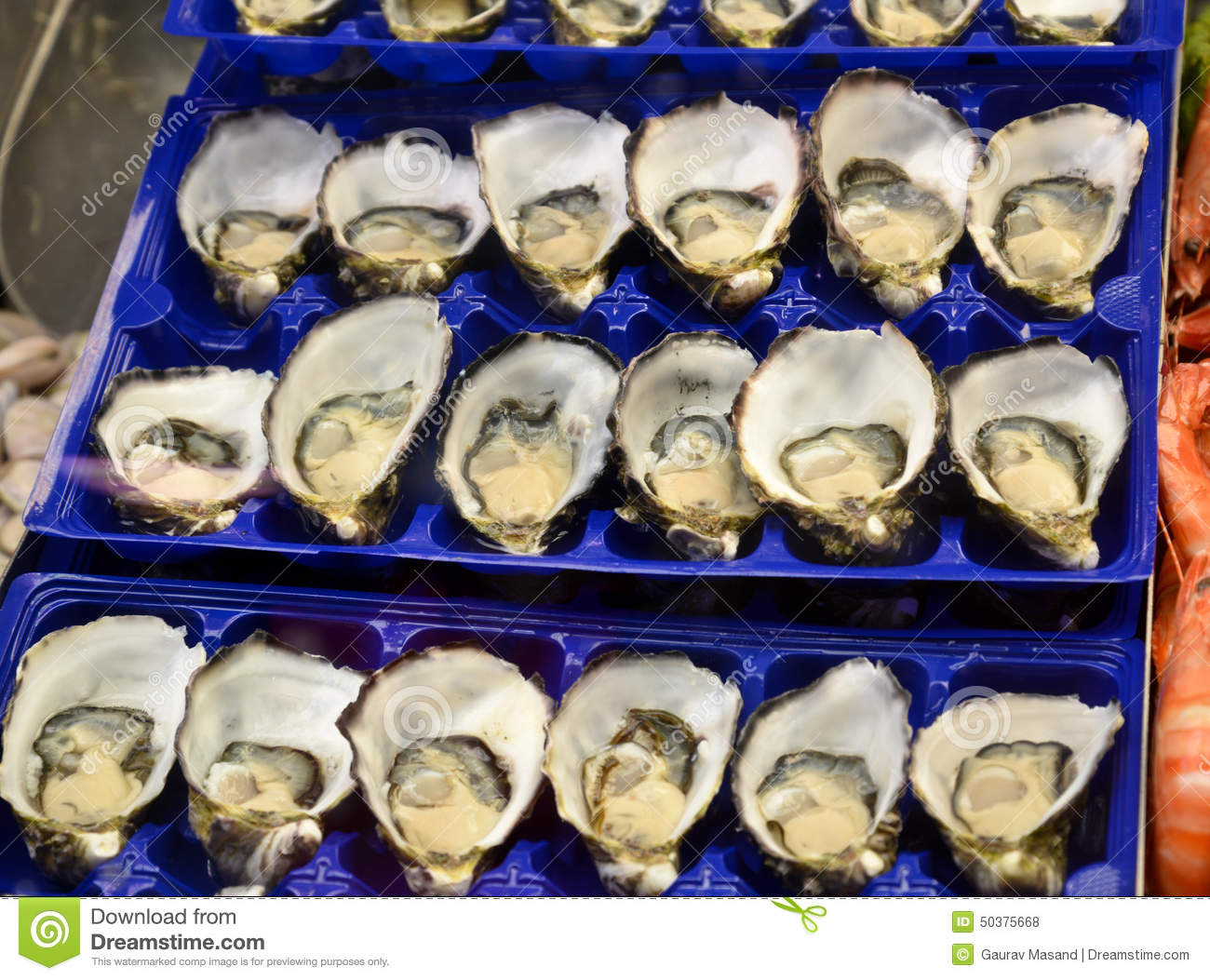 Fresh Seafood Oysters Being Sold In Victoria Market Stock