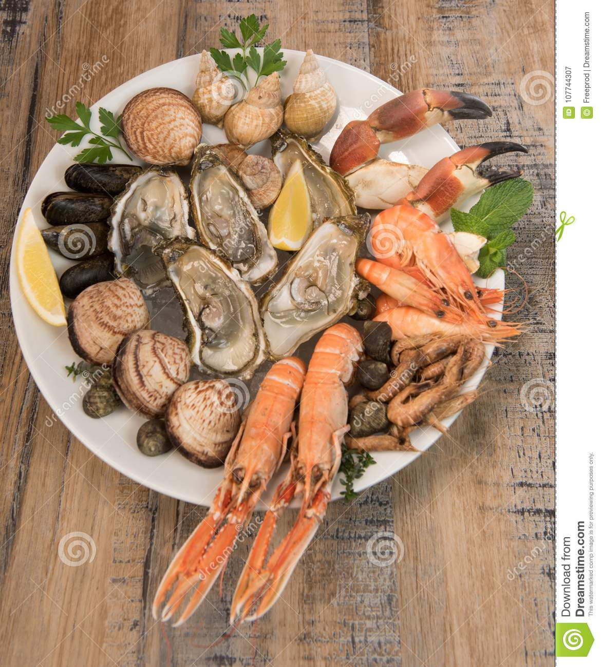 Fresh Seafood Platter With Lobster Mussels And Oysters Stock Image Image Of Party Presentation 107744307