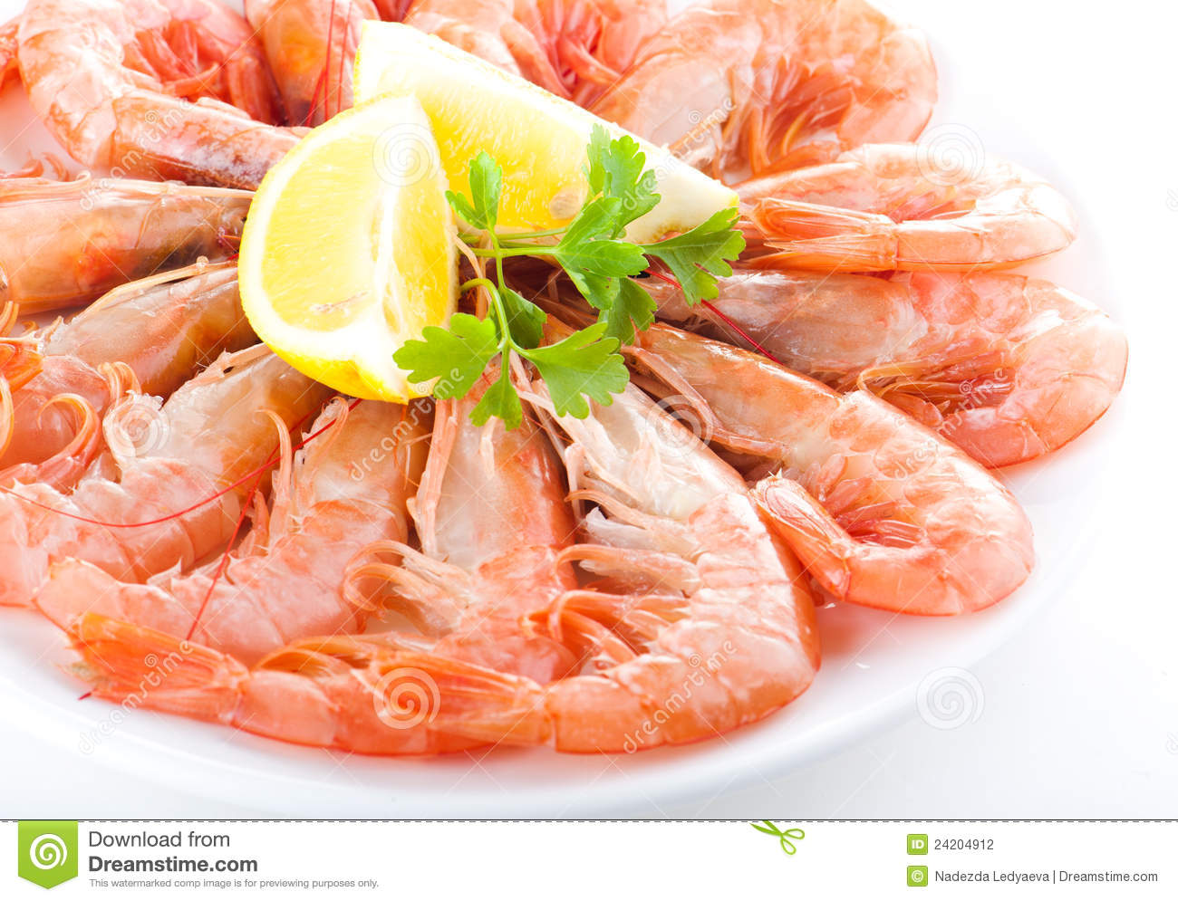 Fresh Shrimp Stock Photography - Image: 24204912