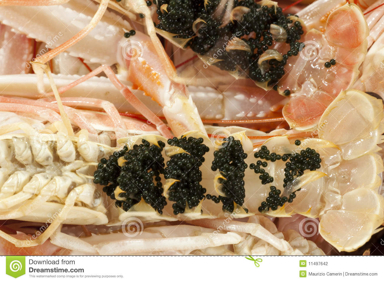 Fresh Shrimp Scampi With Eggs Stock Photography - Image: 11497642