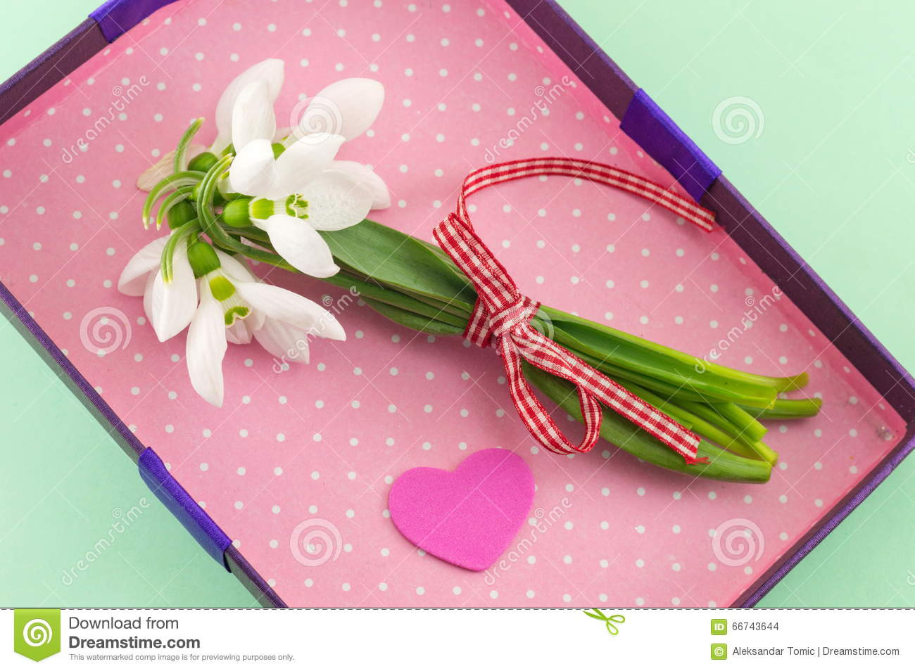Download Fresh Snowdrops Bouquet In Romantic Box Stock Photo - Image of announcing, flowers: 66743644