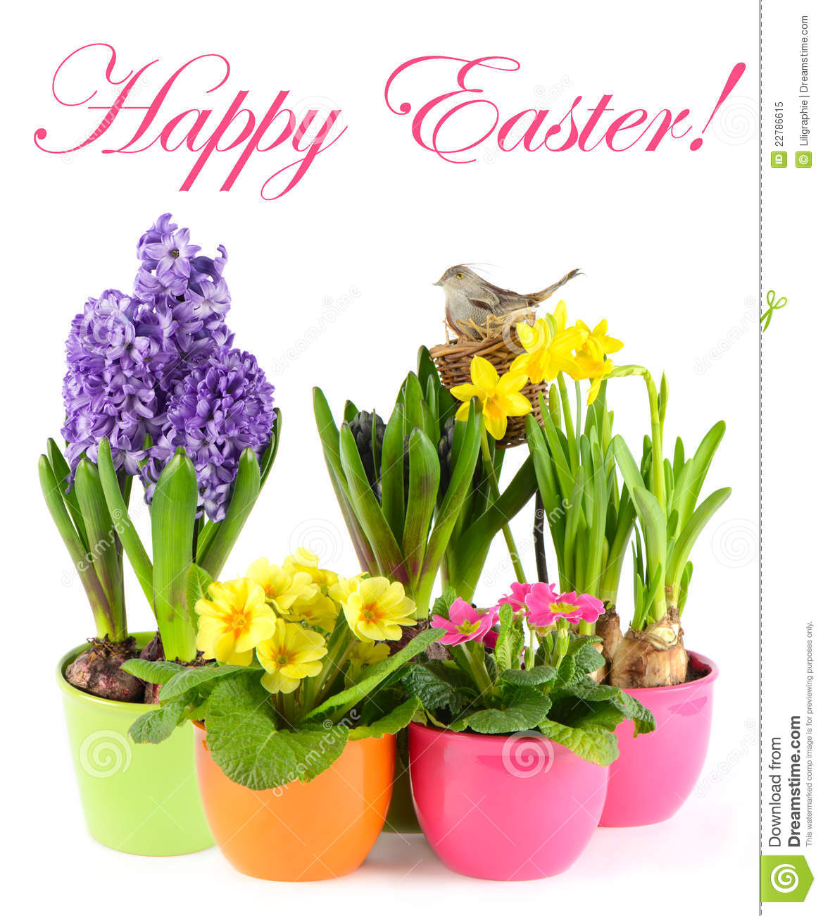 Fresh spring flowers with birds nest easter stock image image of fresh spring flowers with birds nest easter mightylinksfo