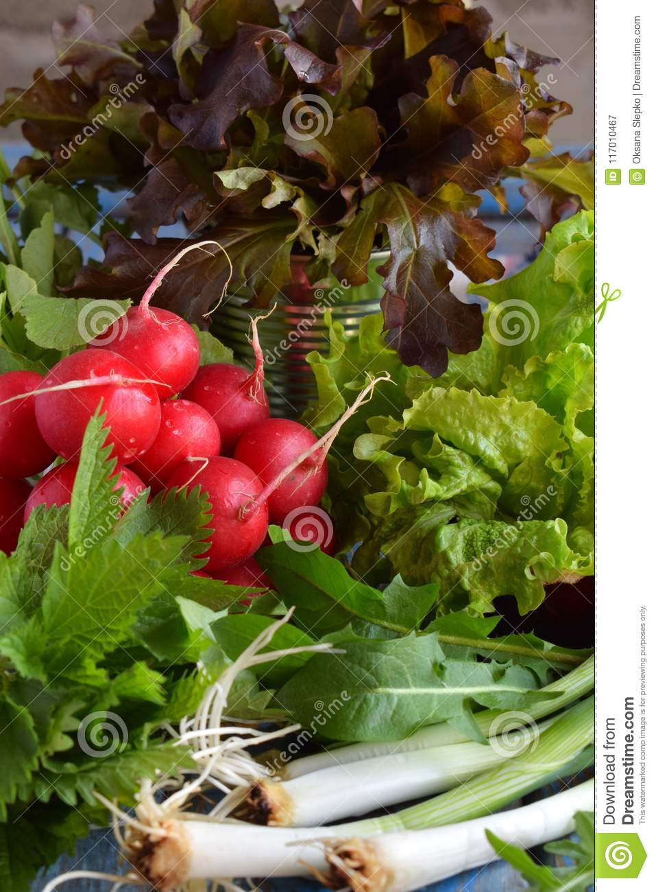 Fresh spring vegetables and edible wild herbs: radish, green and purple lettuce, onions, arugula, nettle, dandelion. Preparation f