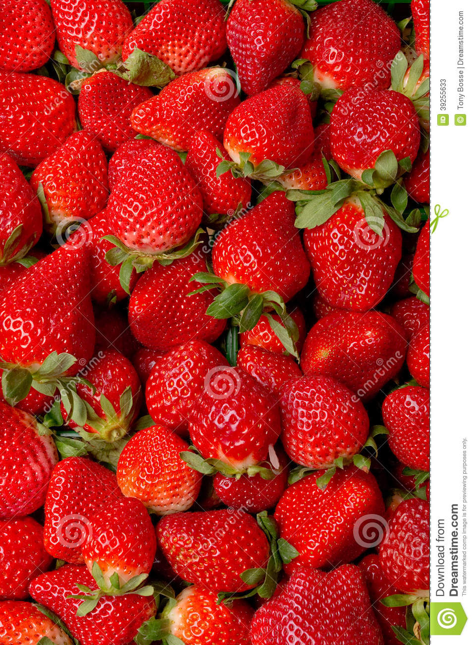 Fresh strawberries stock photo image 39255633 for What can you make with strawberries