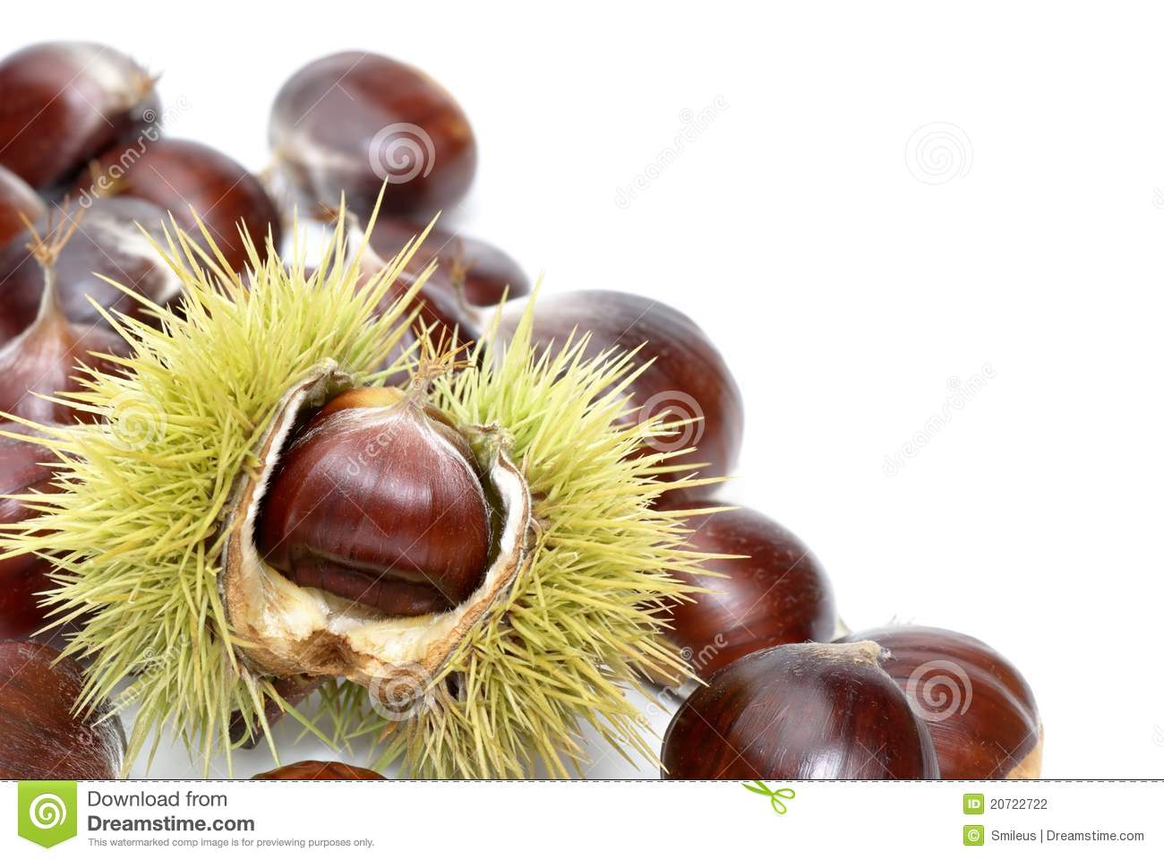 Fresh sweet chestnuts on pure white