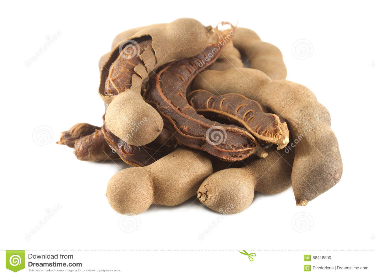 Fresh Tamarind stock photo  Image of pulp, isolated, beans - 88416890