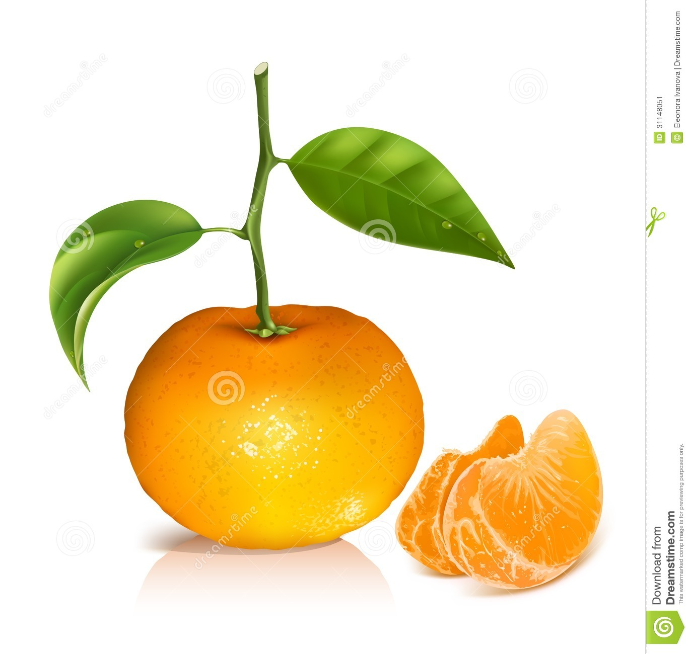 Royalty Free Stock Photography Lemon Tree Isolated Bright Yellow Pot Image35844947 moreover Orange Clipart together with Annatto Ground likewise Mestizo besides Osage orange. on orange juice tree