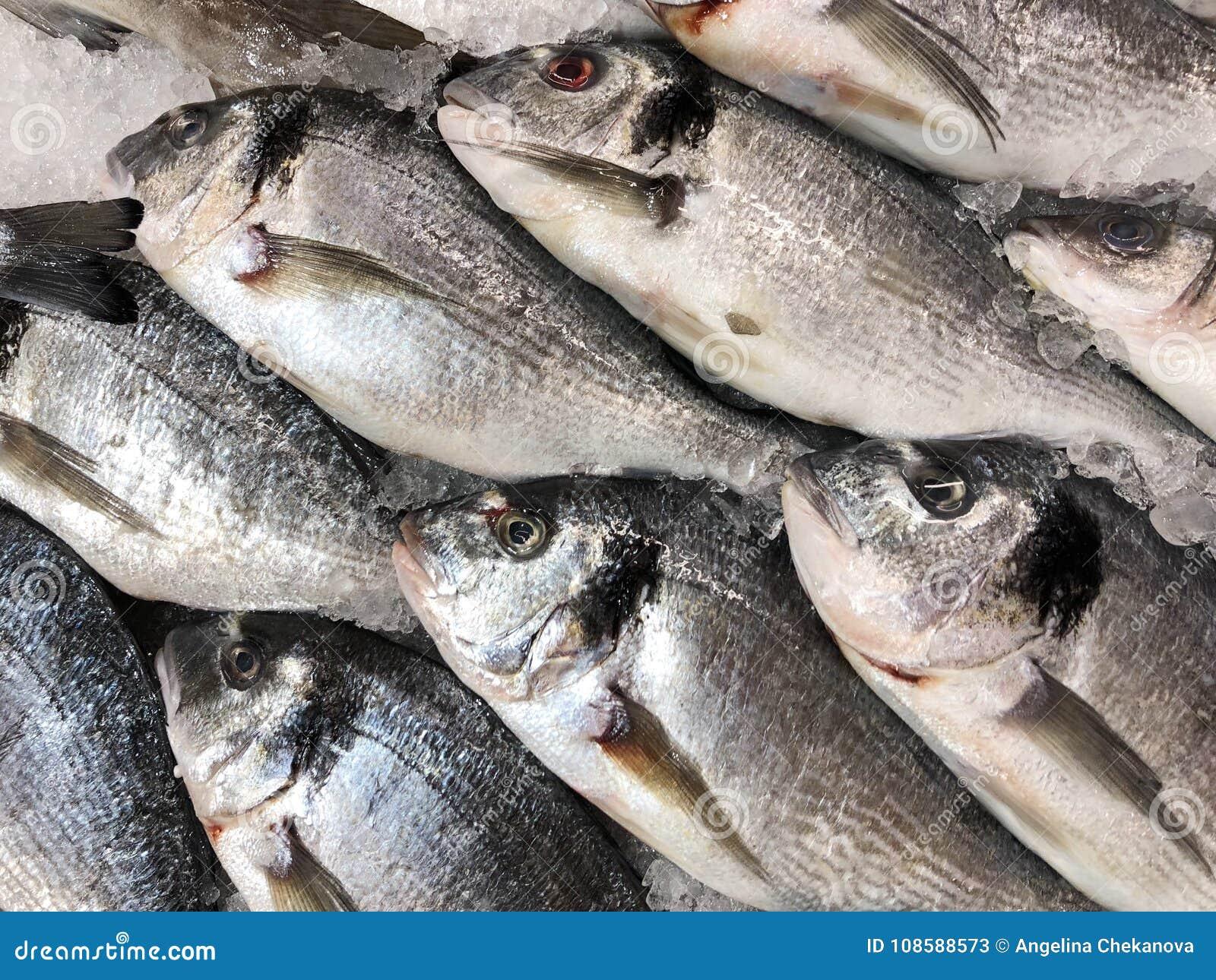 Fresh tasty fish on ice at market