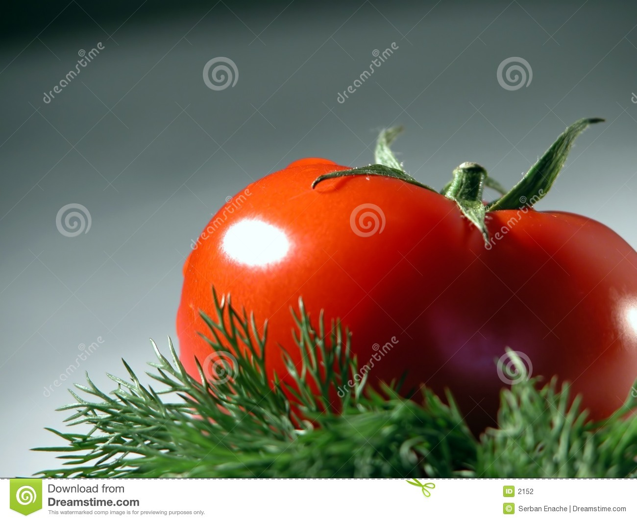 Fresh tomato and dill
