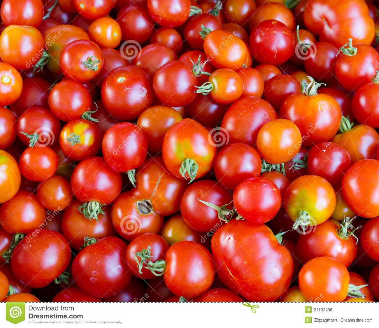 Fresh tomatoes on display at the farmer s market