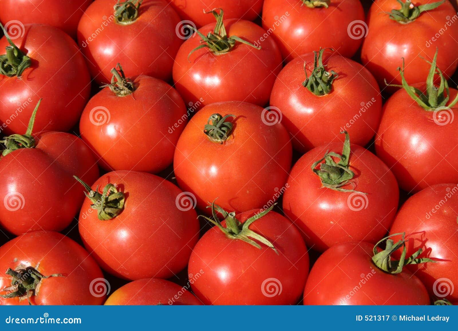 Fresh tomatos at the farmers market