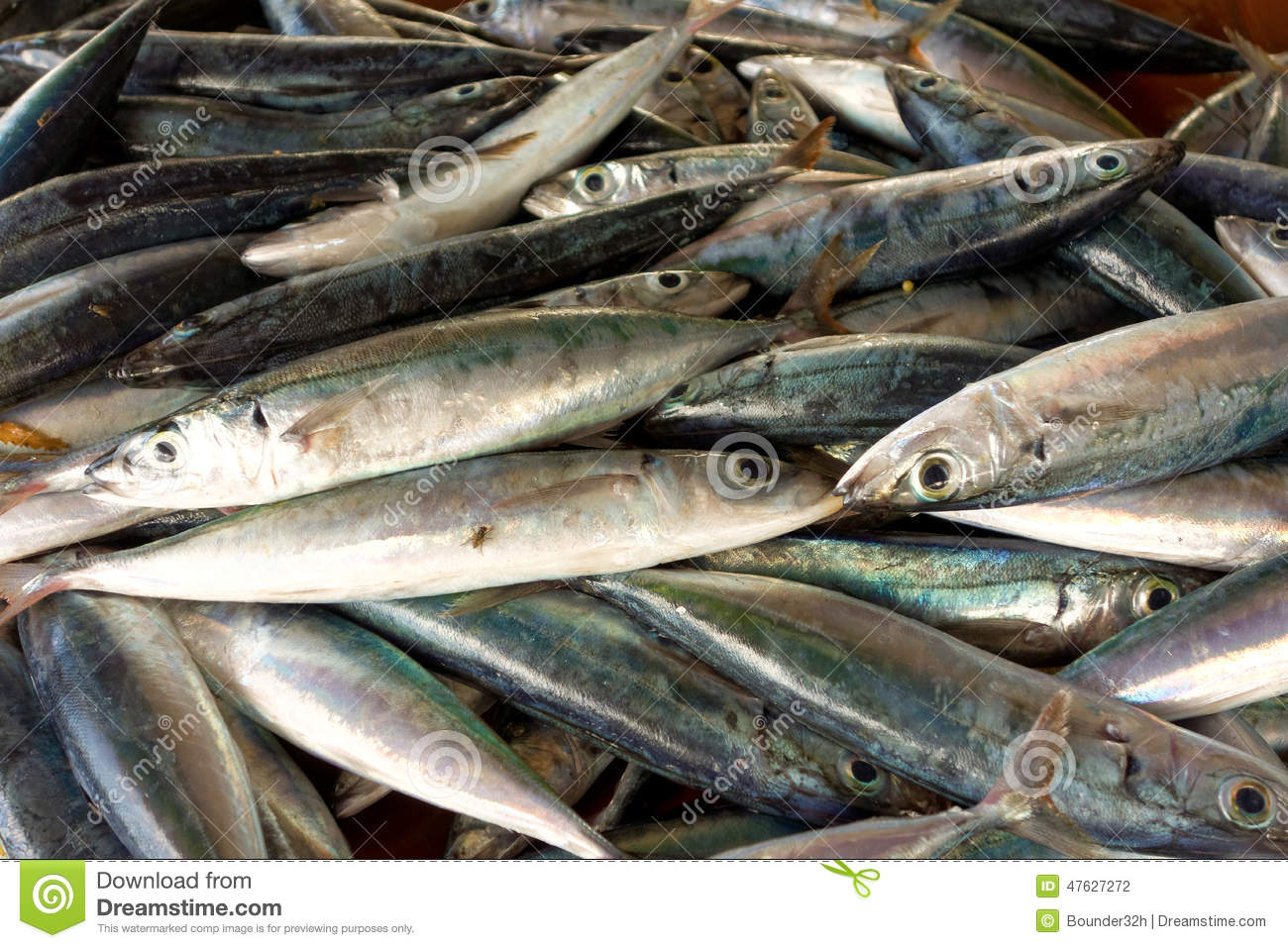 Fresh Tropical Fish For Sale On Bequia Stock Photo - Image of fresh