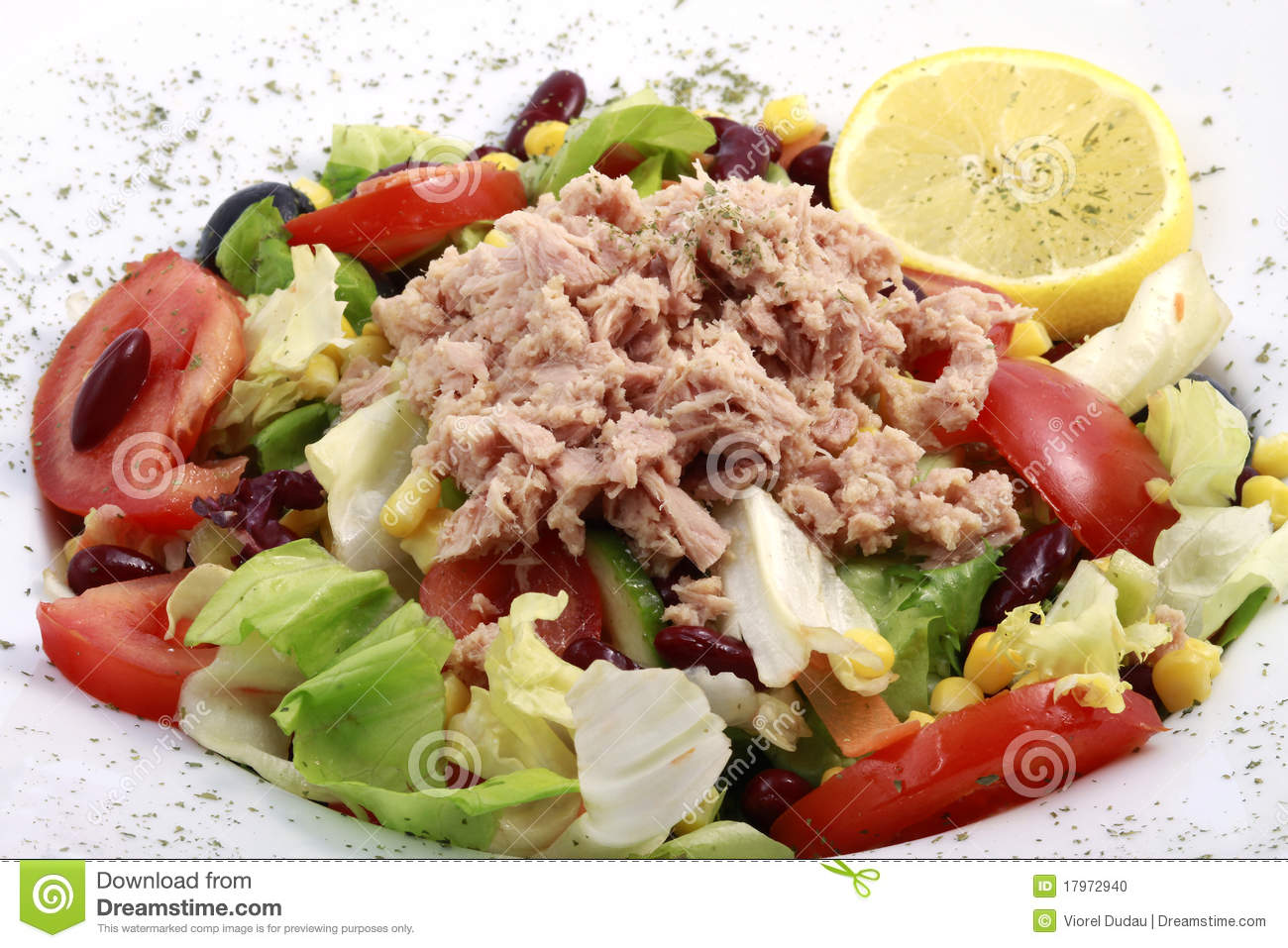 Fresh salad close up with tuna fish, tomatoes, beans and green leafs ...