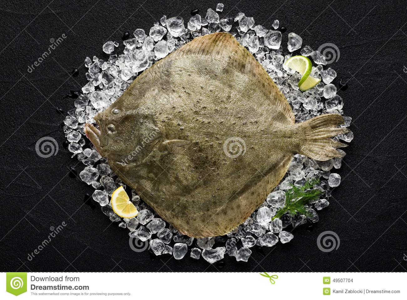 Fresh turbot fish on ice on a black stone table stock for Turbot fish price