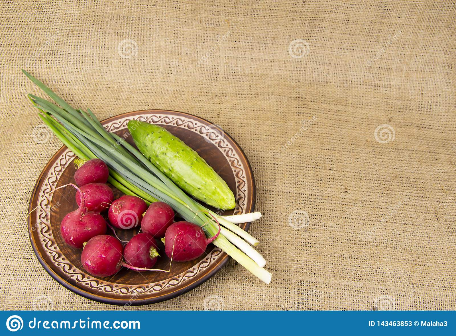 Fresh vegetables on a plate - radishes, onions, cucumbers