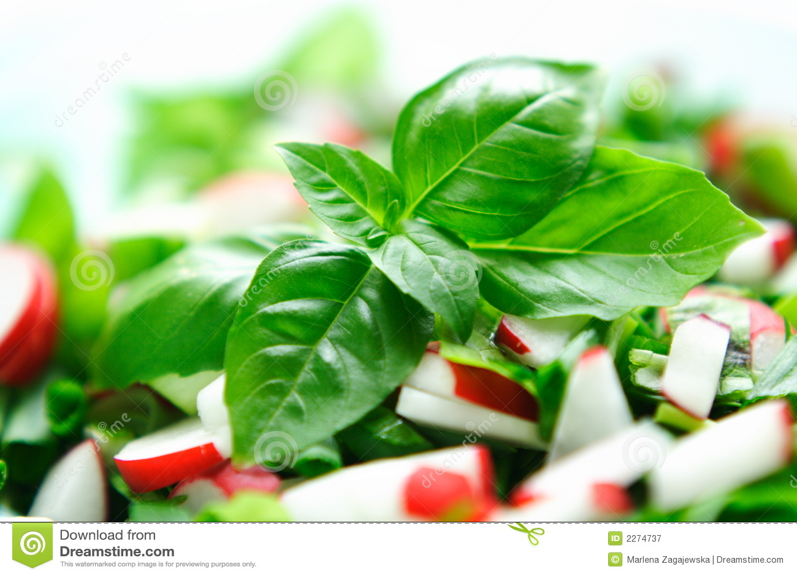 Fresh vegetables salat