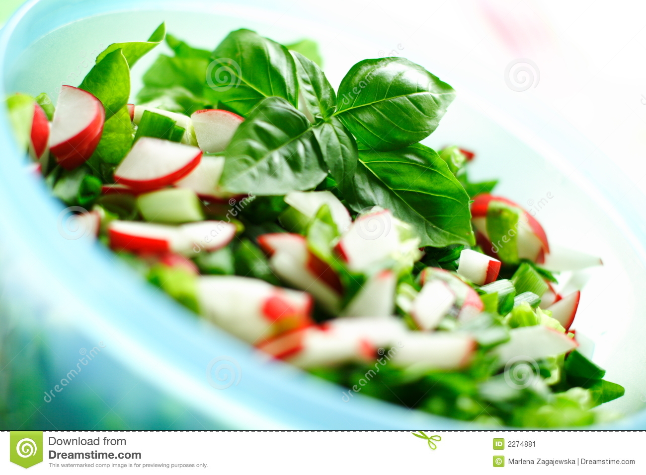 Fresh vegetables salat