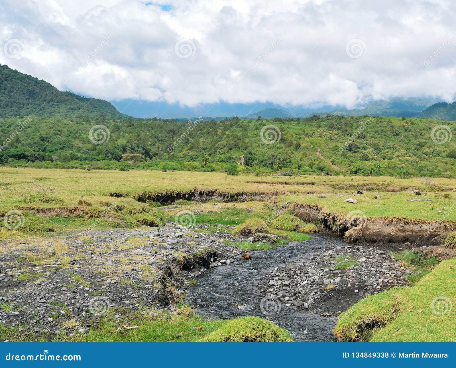 A fresh water river against a mountain background, Mount Meru, Tanzania