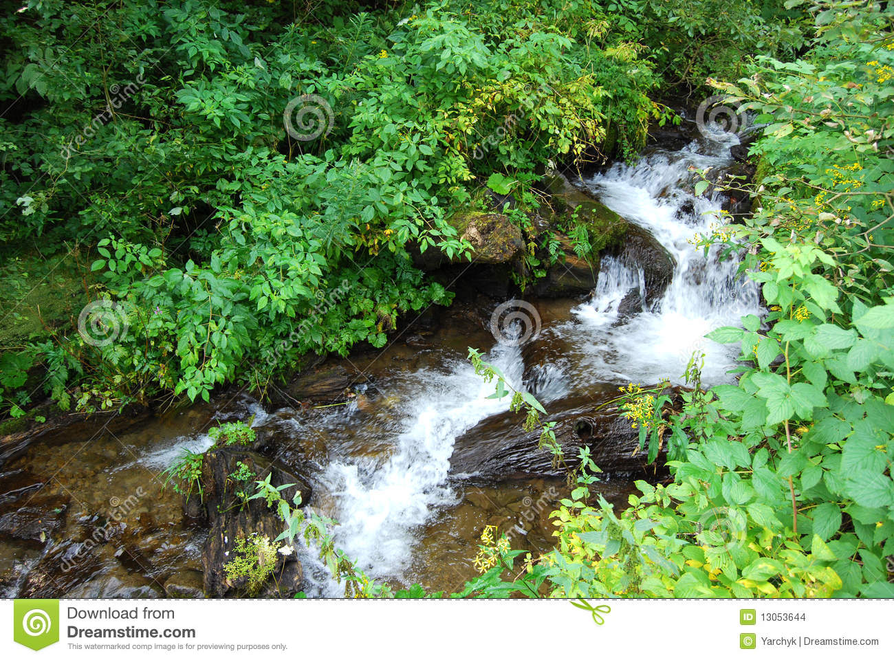 Fresh Water Spring Cascade Stock Images - Image: 13053644