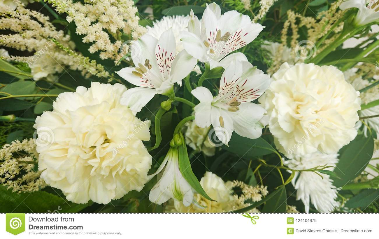 Fresh White Bridal Flowers For Love And Purity Stock Image Image
