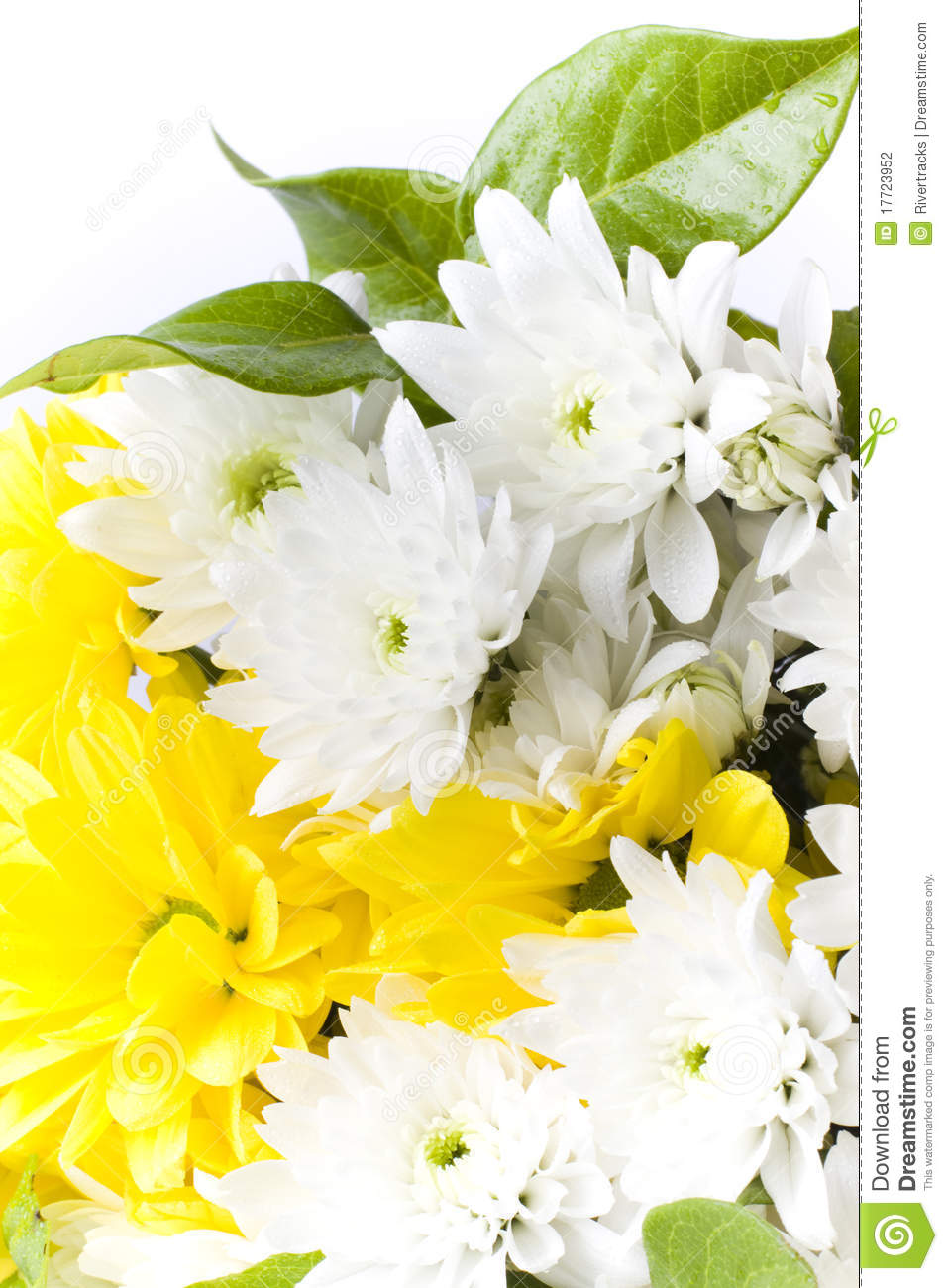 Fresh White And Yellow Flower Arrangement Stock Photo Image Of