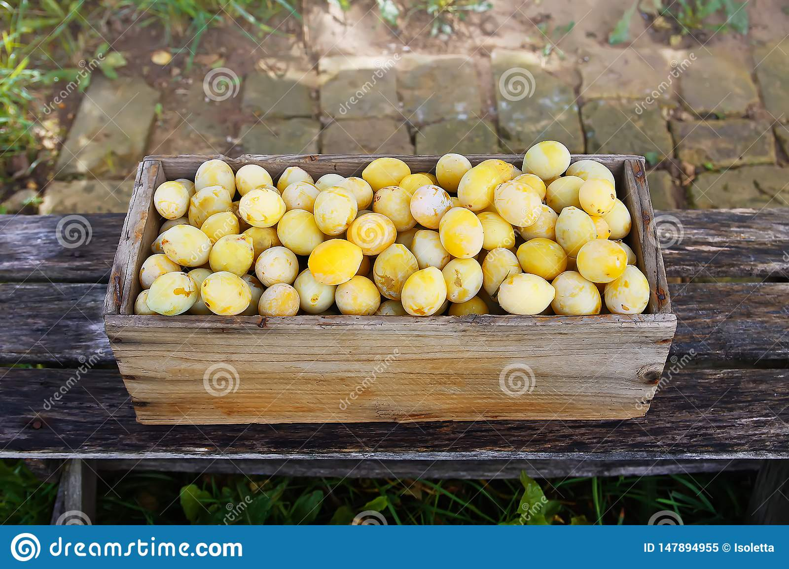 Fresh yellow plums. Ripe fruits in a wooden box on boards background