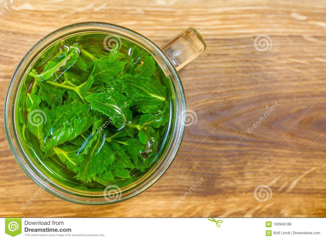 Download Mint tea on the table stock image. Image of liquid, healthy - 100946189