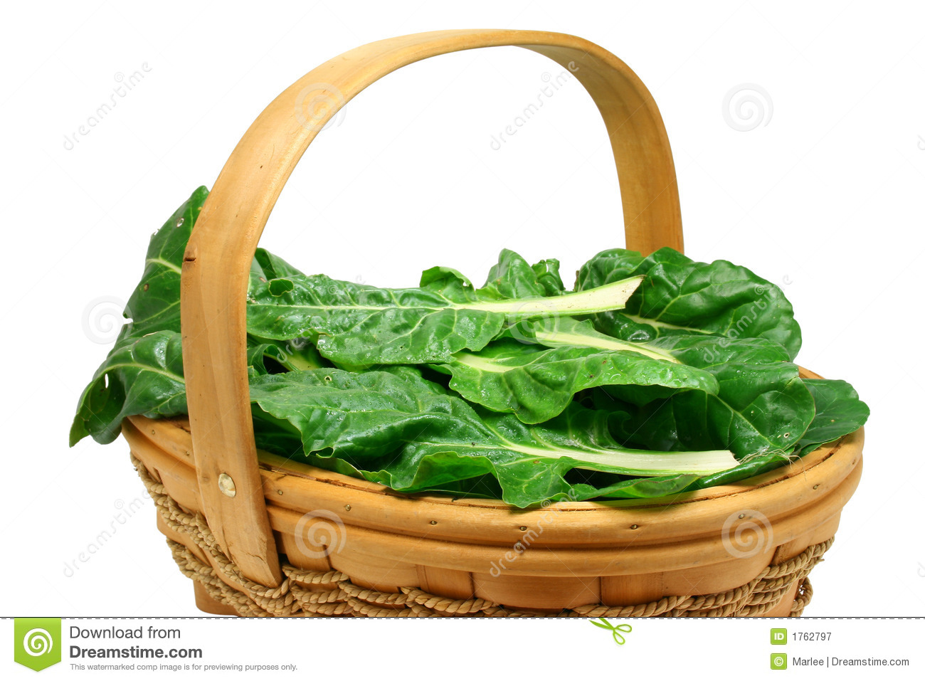 Freshly picked chard (clipping path included)