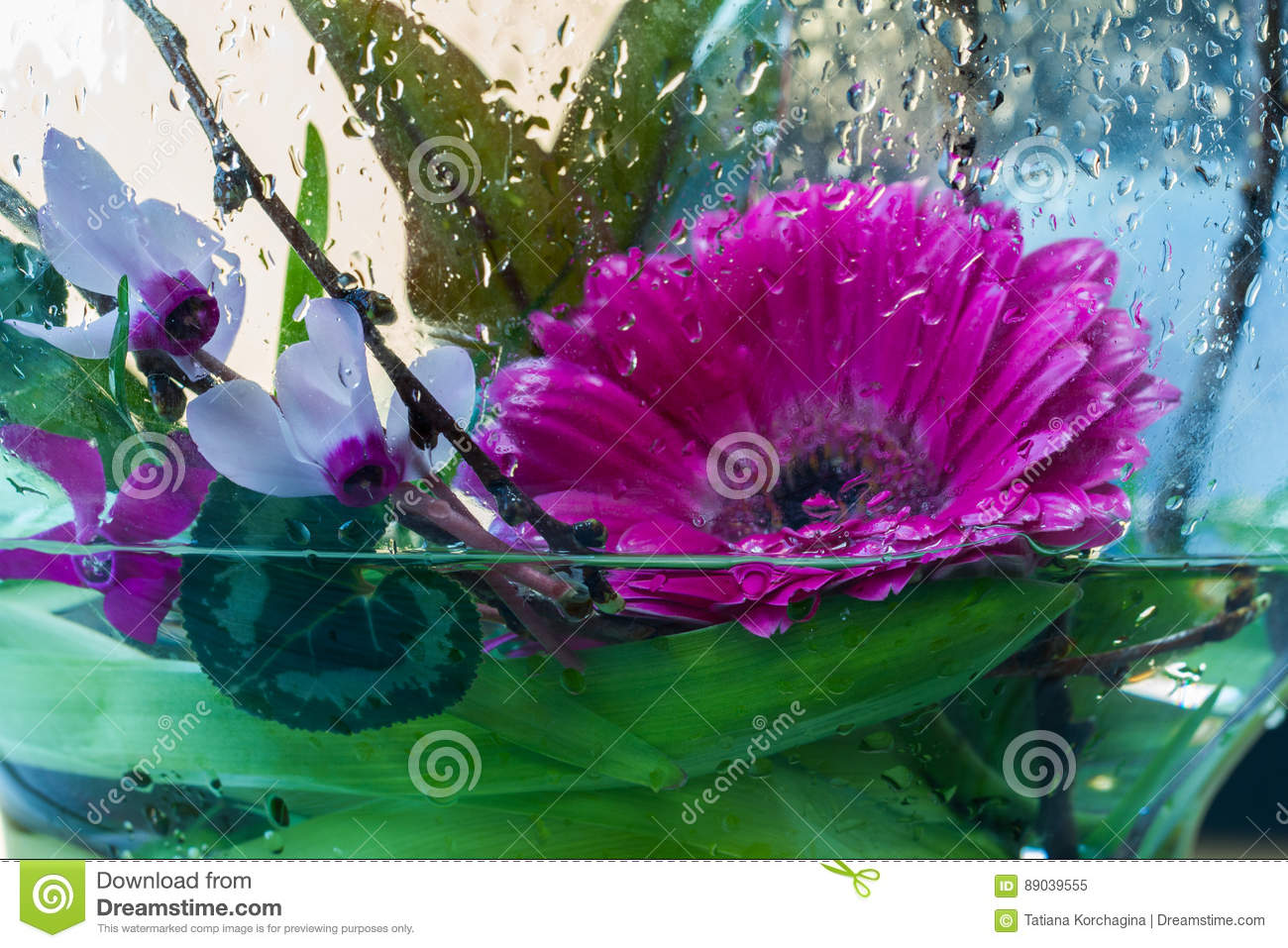 Freshness, flowers in the water drops.