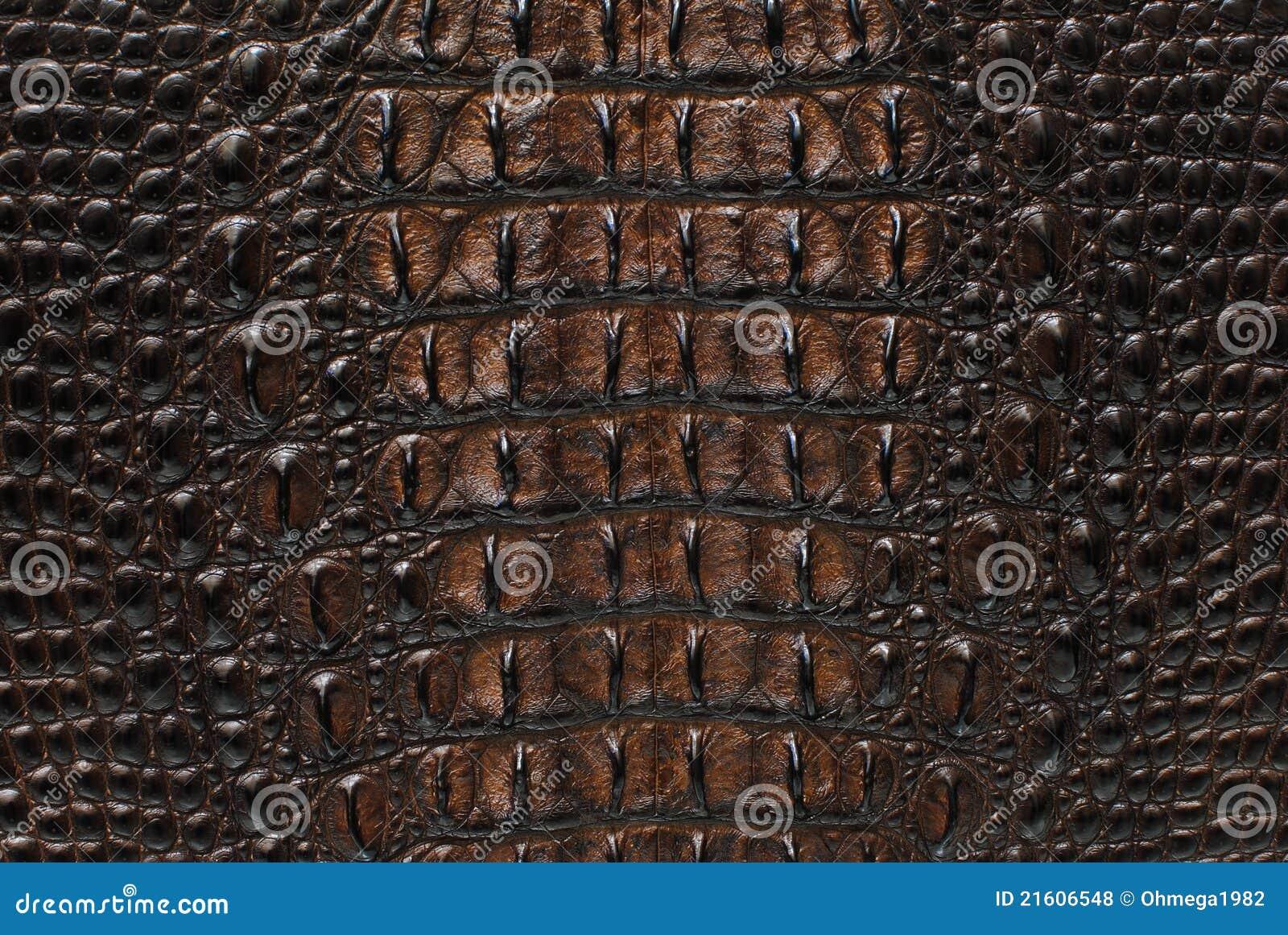 Freshwater Crocodile Bone Skin Texture Background Stock