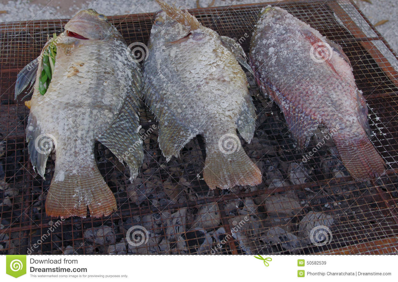Freshwater fish diet - Freshwater Fish Food Salt Fish Grilled