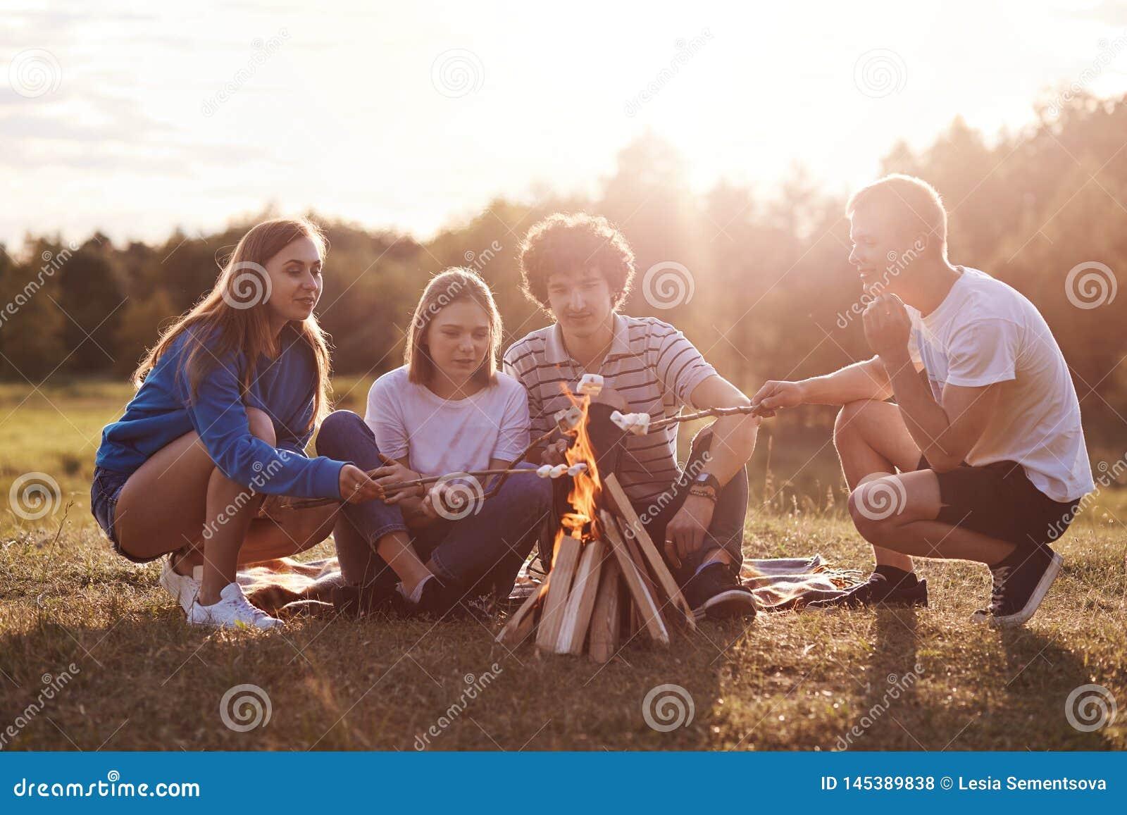 Freunde in den Wiese beleuchteten Feuer- und Fischrogeneibischen, unset Zeit, sonniger Sommertag, Gruppe Knaben wenden das Freize